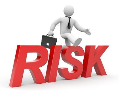 maximize profits, minimize risk