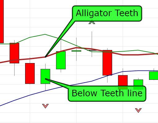 alligator teeth and below teeth line