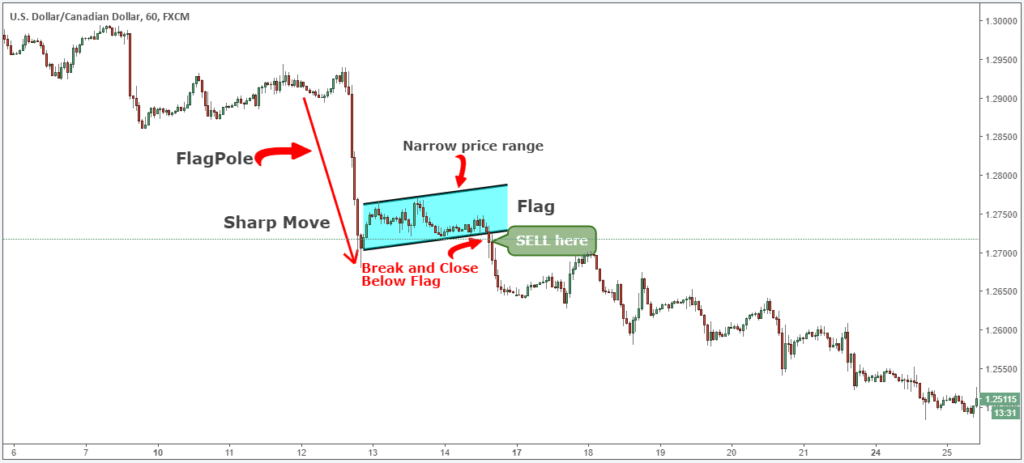 bear flag definition