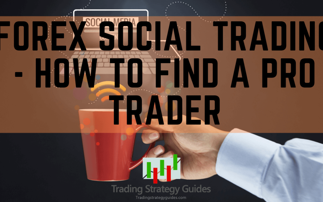 The Best Social Trading Platforms (Top 3 in 2020)