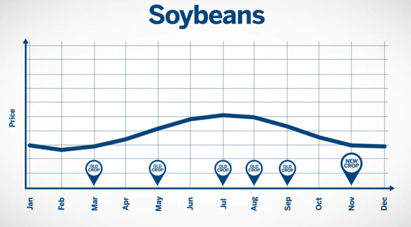 soybean trading strategies